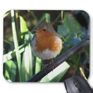 Robin Readbreast Mousemat